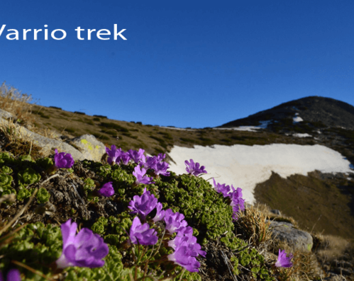 Video from Polezhan peak - Pirin | Varrio Trek